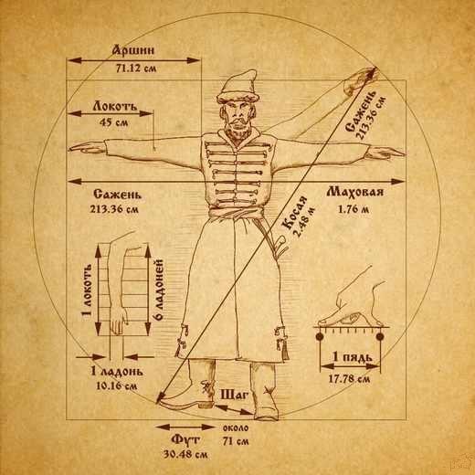 идеальный тип человеческого тела
